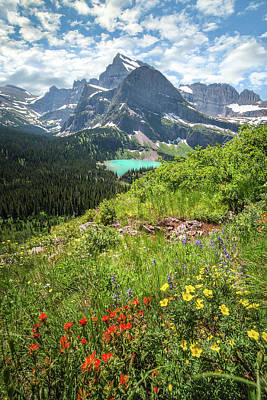 Poster featuring the photograph Grinnell Flowers // Grinnell Hiking Trail, Glacier National Park  by Nicholas Parker