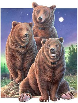 Grizzly Bears In Starry Night Poster