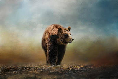 Grizzly On The Rocks Bear Art Poster by Jai Johnson