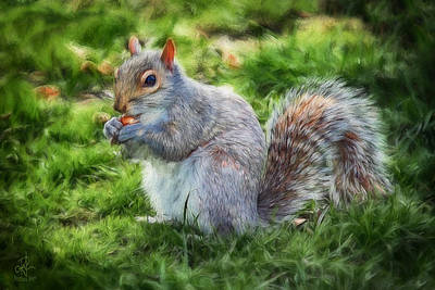 Poster featuring the photograph Ground Squirrel by Pennie  McCracken