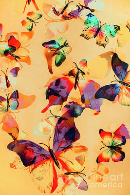 Group Of Butterflies With Colorful Wings Poster