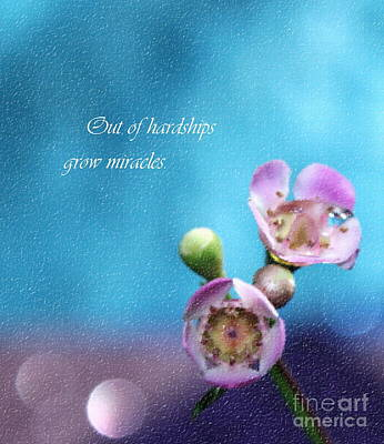 Grow Miracles Poster by Krissy Katsimbras