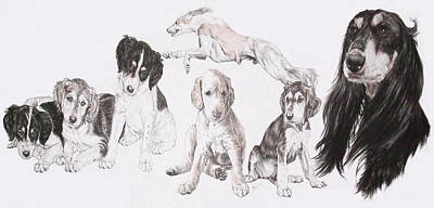 Growing Up Saluki Poster by Barbara Keith