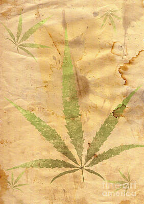 Grunge Paper With Leaf Of Grass Poster