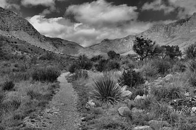 Guadalupe Mountains Morning Poster