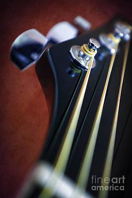 Guitar Head Stock Poster by Carlos Caetano