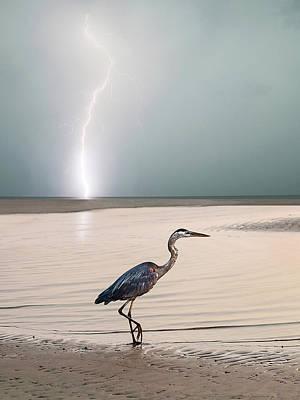 Gulf Port Storm Poster