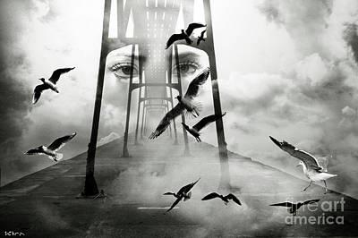Gull Bridge Poster