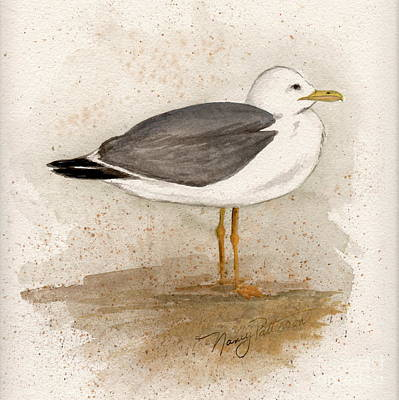 Gull Poster by Nancy Patterson