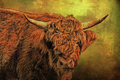 Hairy Highland Beastie Poster