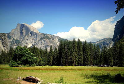 Half Dome Yosemite From The Meadow Poster