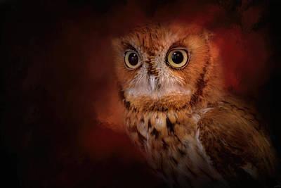 Halloween Owl Poster by Jai Johnson