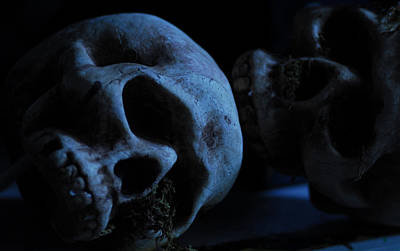 Halloween Skulls Poster