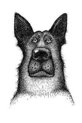 Hands Drawing A Portrait Of A Dog - Sheep Dog Poster by Anastasiia Kononenko