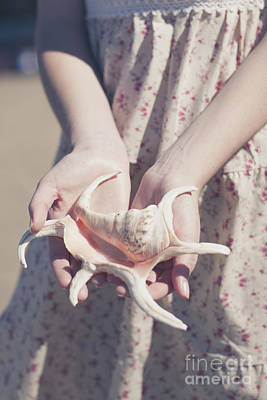 Hands Holding Large Seashell Poster by Jorgo Photography - Wall Art Gallery