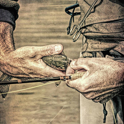 Hands Of A Fly Fisherman Grunge Poster by Jennie Marie Schell
