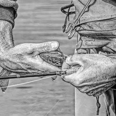 Hands Of A Fly Fisherman Monochrome Poster by Jennie Marie Schell