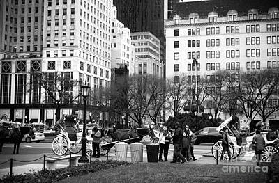 Hanging At The Grand Army Plaza Poster by John Rizzuto