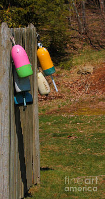 Poster featuring the photograph Hanging Buoys by Debbie Stahre
