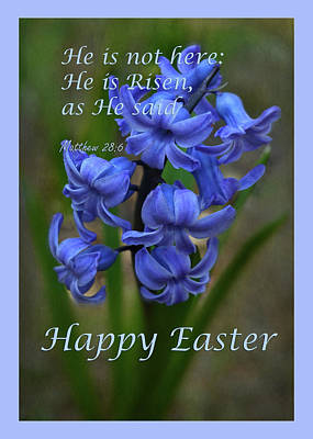 Poster featuring the photograph Happy Easter Hyacinth by Ann Bridges