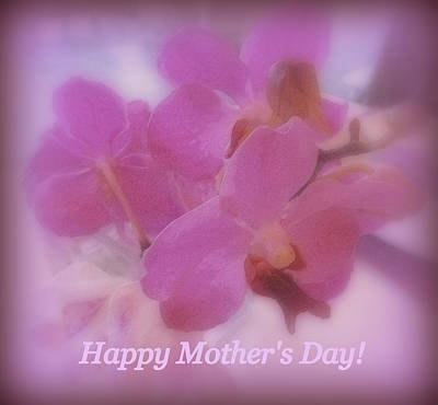 Happy Mother's Day Orchids Poster by Kay Novy