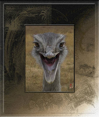 Banjo The Emu And Happy To See You Poster by Patricia Whitaker