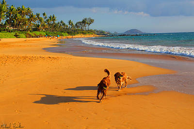Hawaiian Beach Dogs Poster by Michael Rucker