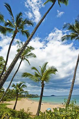 Hawaiian Shore On Maui 14 Poster by Micah May