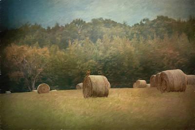 Hawk In The Hay Field Poster