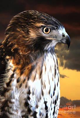 Hawk Sunset Poster by Adam Olsen