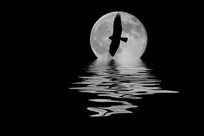 Hawk In The Moonlight 2 Poster