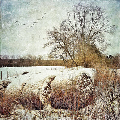 Hay Bales In Snow Poster