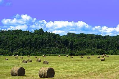 Hay Bales Iphone 7 Poster