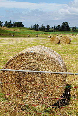 Hay Bales Poster by Les Cunliffe