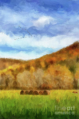 Poster featuring the photograph Hay Bales by Lois Bryan