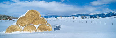Haystacks And Snow, Moose-wilson Road Poster
