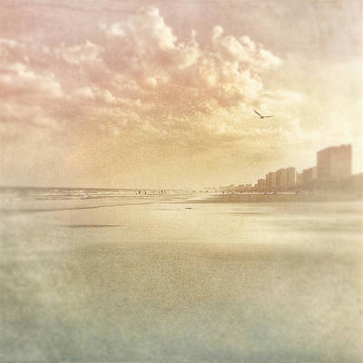 Hazy Day At The Beach Poster