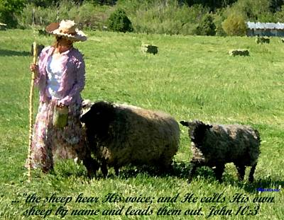 Poster featuring the painting He Calls His Own Sheep By Name by Anastasia Savage Ealy