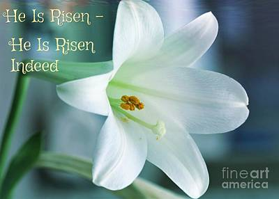 He Is Risen Easter Celebration Poster by Diann Fisher