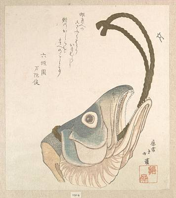 Head Of A Salmon Poster by Eastern Accent