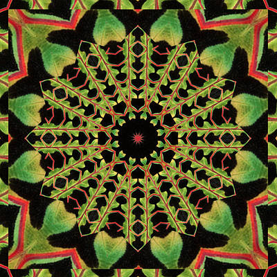 Healing Mandala 13 Poster by Bell And Todd