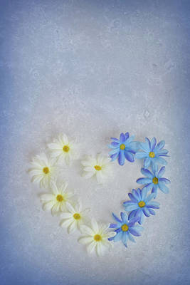 Heart And Flowers Poster