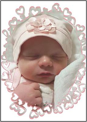 Heart Border On Newborn Girl Poster