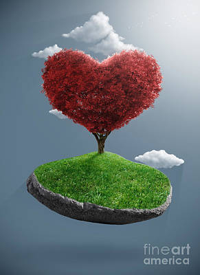 Heart Tree On Suspended Rock Poster