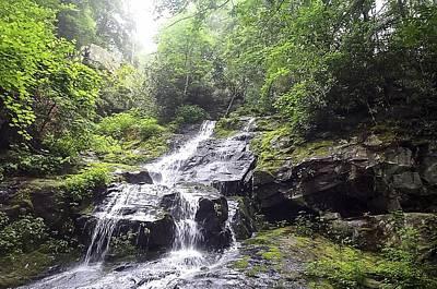 Hen Wallow Falls Great Smoky Mountains National Park Poster