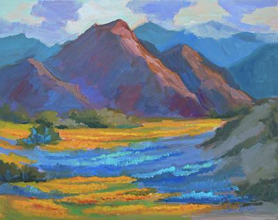 Henderson Canyon Borrego Springs Poster