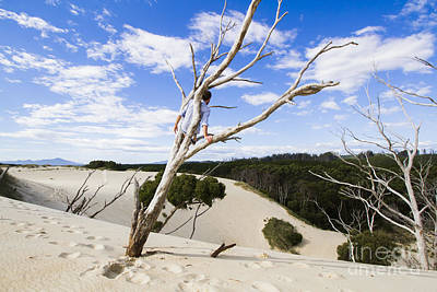 Henty Dunes Tourist Climbing Dead Tree Poster by Jorgo Photography - Wall Art Gallery