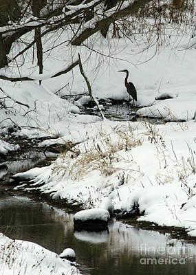 Heron In Winter Poster