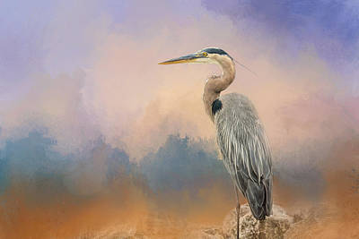 Heron On The Rocks Poster by Jai Johnson