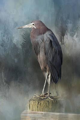 Heron Profile Poster by Kim Hojnacki